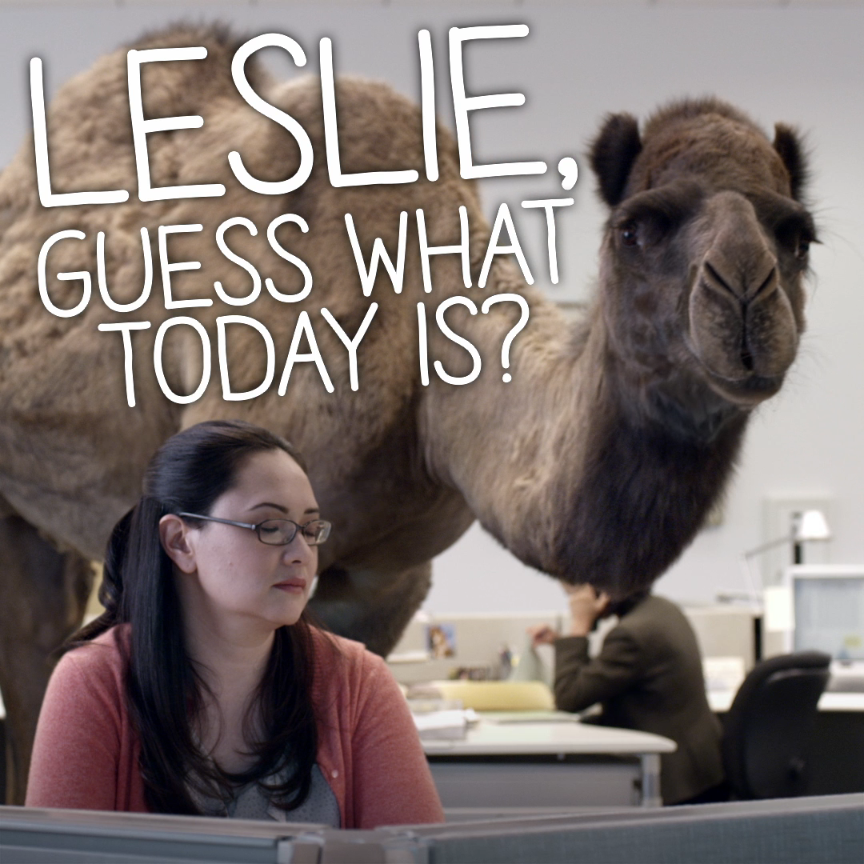 Guess What Day It Is In This GEICO Classic? Hump Day, Of