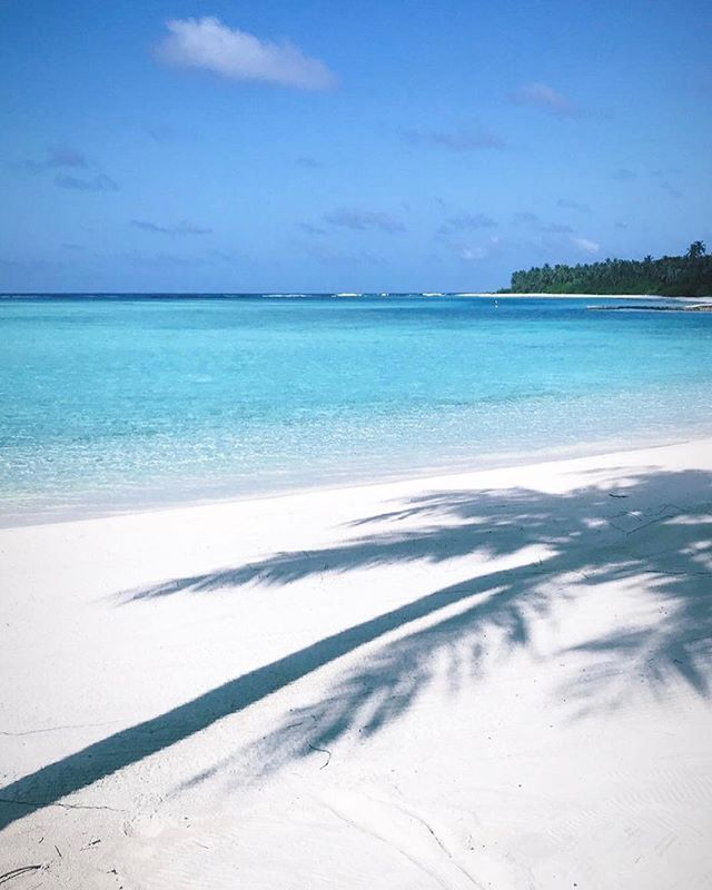 Private Island Beaches: Niyama Private Island #Maldives Photo @patriciaeicke