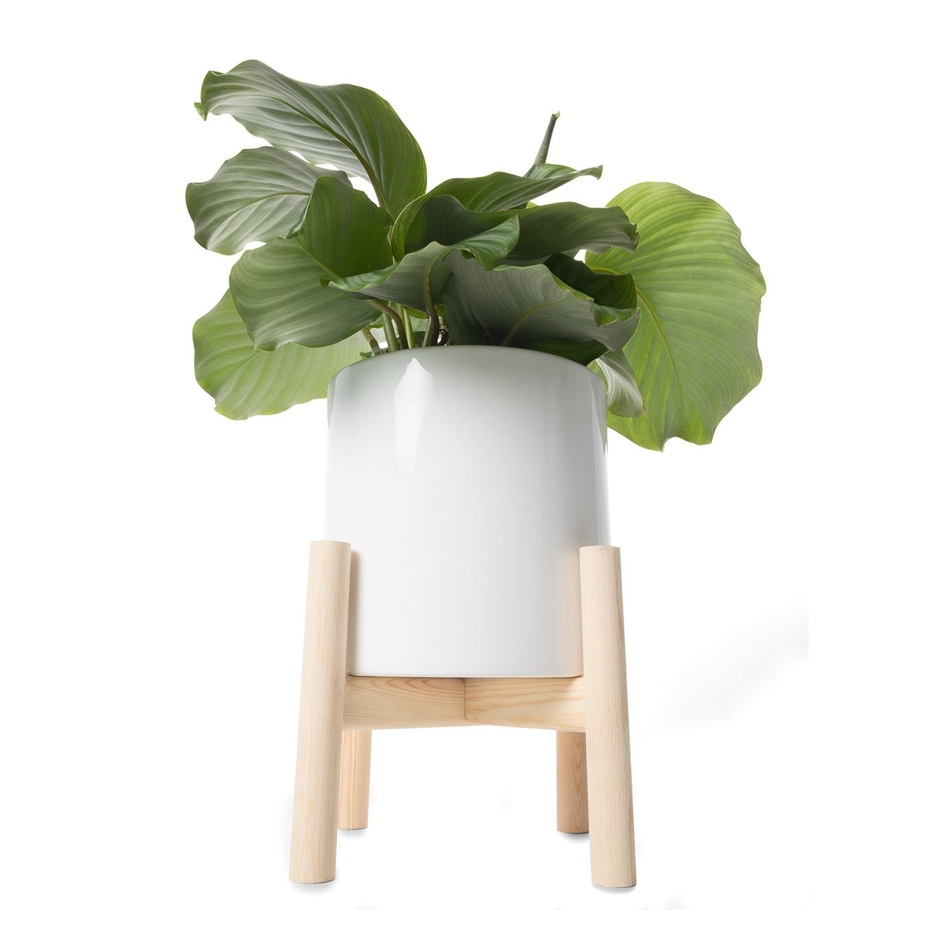 Christmas Gifts For 25 And Under Planters White 400 x 300