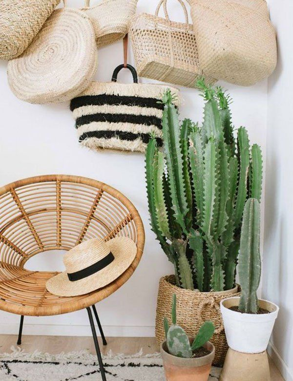 13 awesome tropical decorating ideas for your home My Cosy Retreat