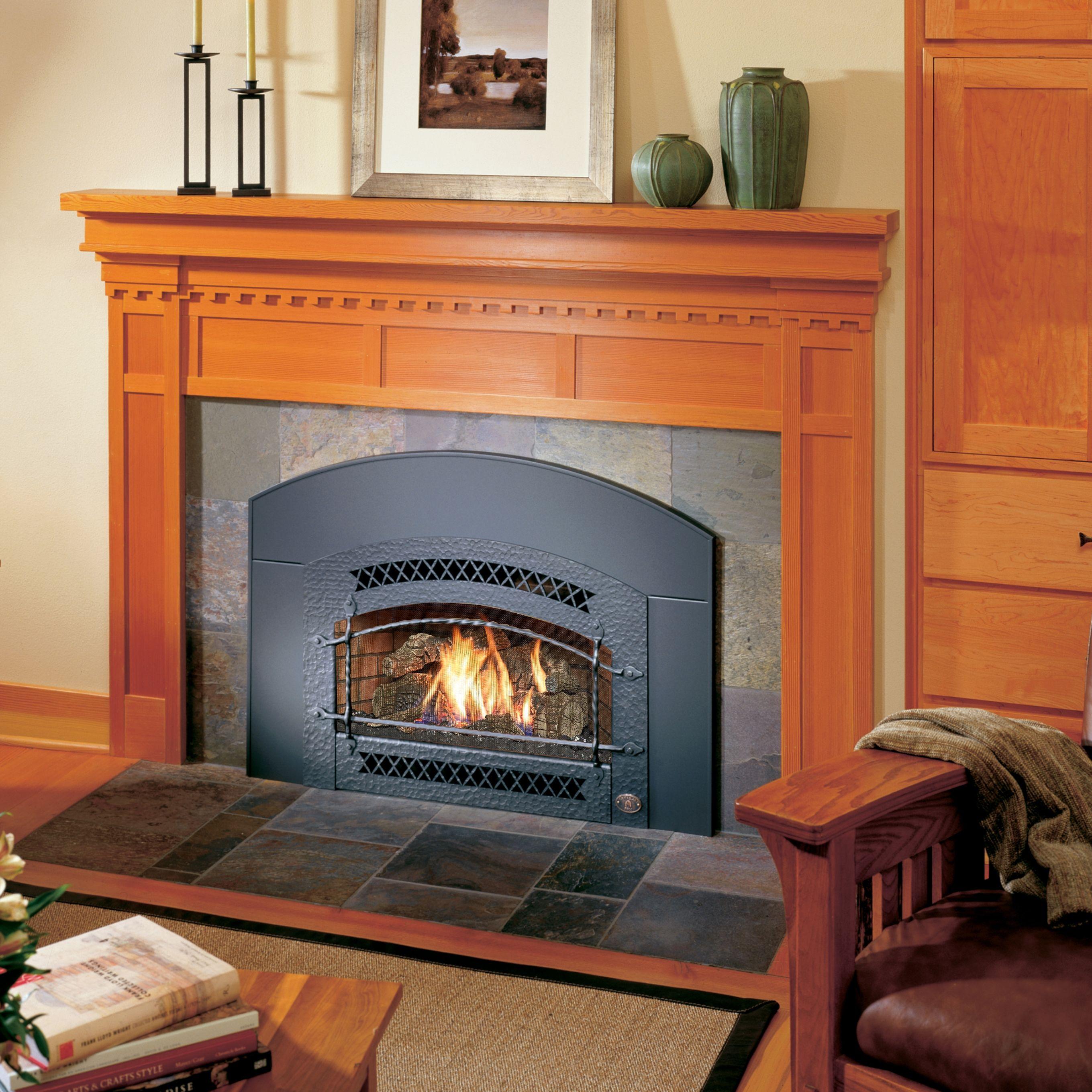 Gas Fireplace Inserts Design Gallery Fireplace Xtrordinair