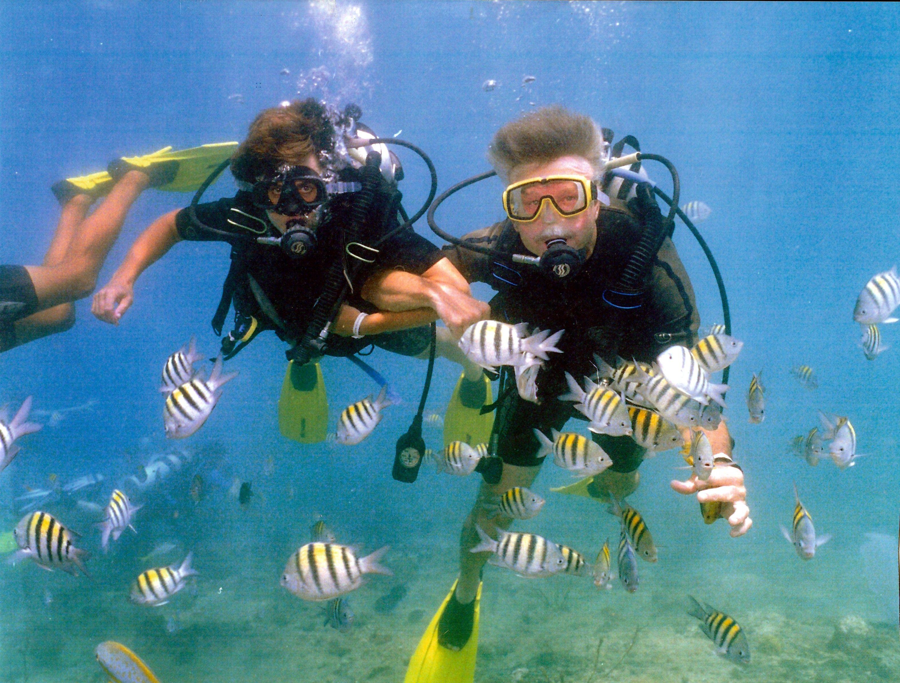 Scuba Diving Venice Beach Fl