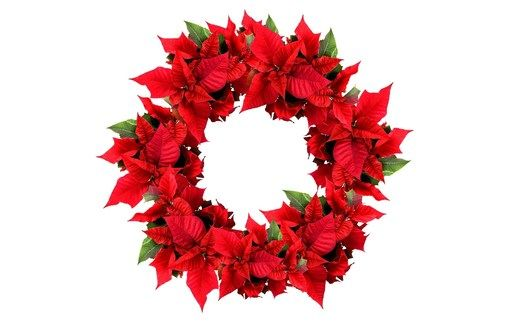Picture: Christmas Wreath, Christmas Poinsettia Wreath / WallpaperCASA