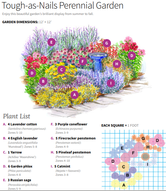 Tough As Nails Perennial Garden Plan Flower Garden Plans