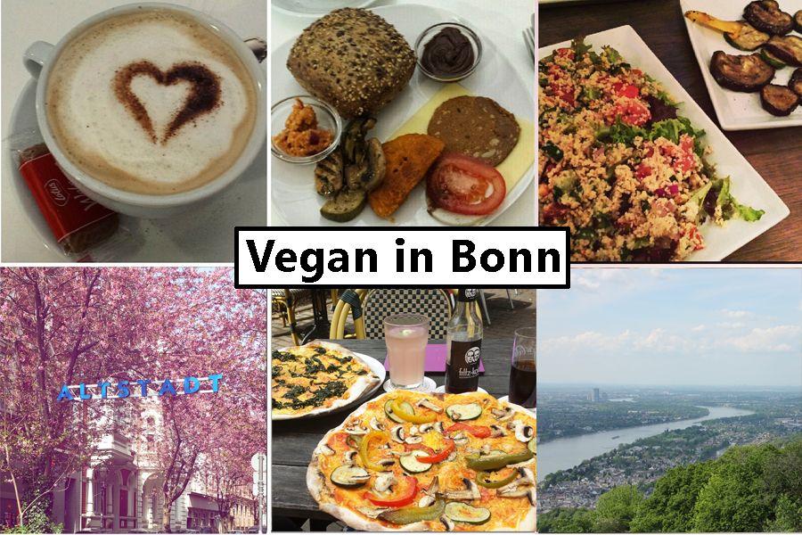 Vegan in bonn bonn and bonn germany bonn germany sciox Images