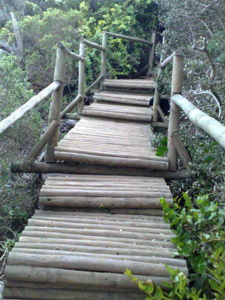 Parque Fray Jorge.