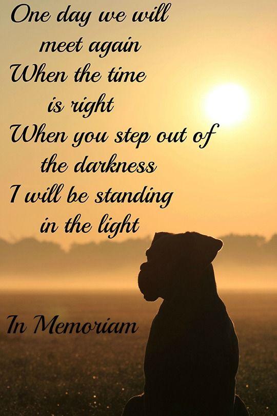 Citaten Voor Een Afscheid : Afbeeldingsresultaat voor afscheid hond dood