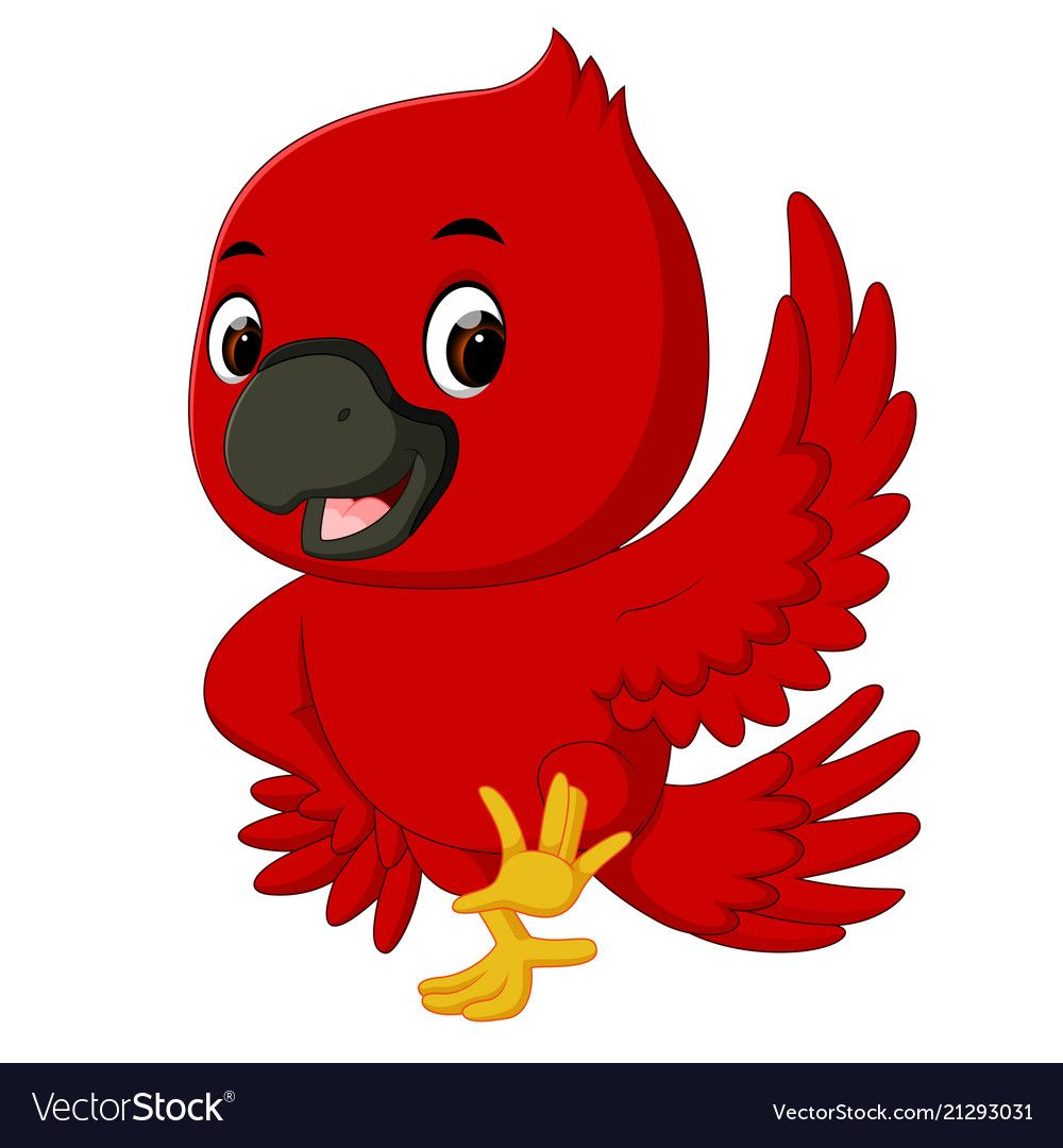 Cardinal Bird Cartoon Vector Image On With Images Bird
