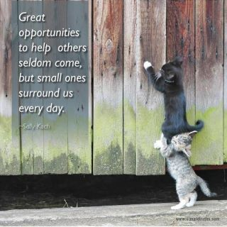 opportunities to help others