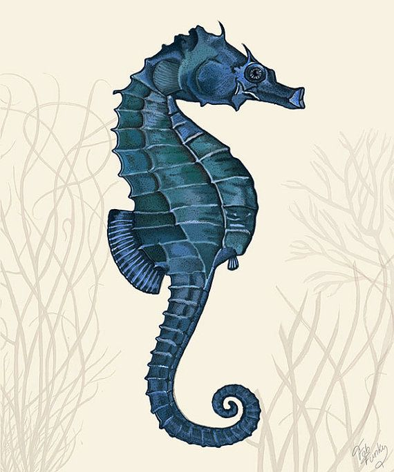 Seahorse Home Decor Wall Art Coastal Decor By Seashoresecrets: Dark Blue/cream 1, Seahorse Wall Decor