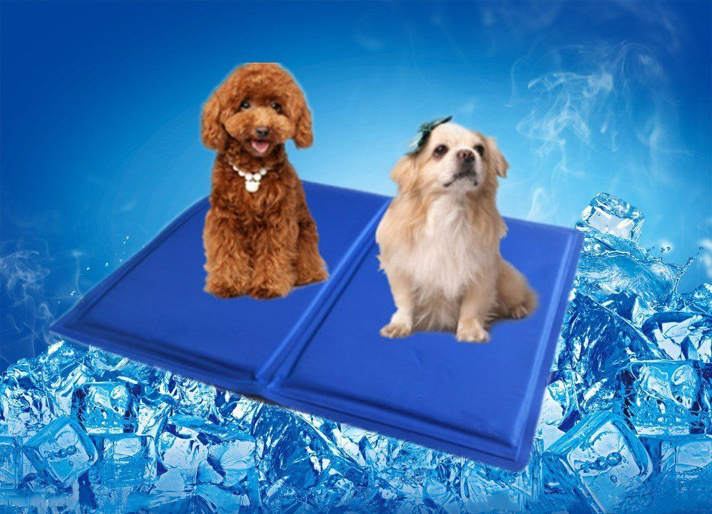 Dog Puppy Cooling Mat Comfortable Cooling Pad Non Toxic Chill Pad Best For Keeping Pets Cool Summer Sleeping Perfect