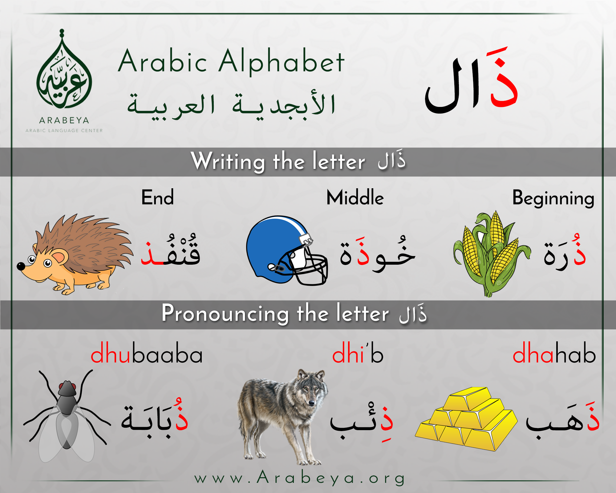 The letter dhaal arabic alphabet pinterest learning the letter dhaal expocarfo