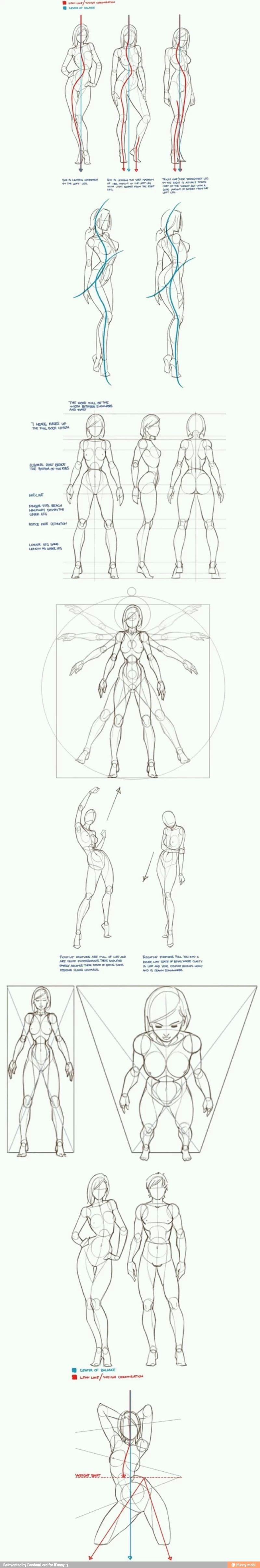 416b771f45e59197d1472913bd876ee2.jpg (800×4818) | Sketches ...
