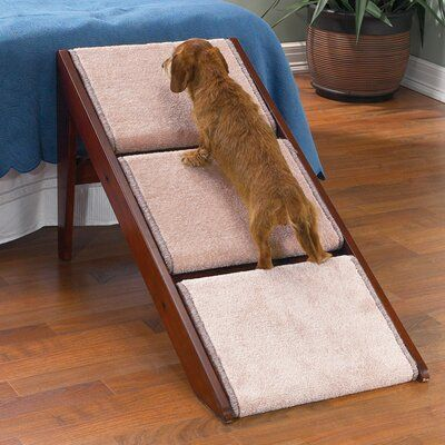 Tucker Murphy Pet Rossman 3 Step Pet Stair - #murphy #rossman #stair #Tucker - #CordlessBlind