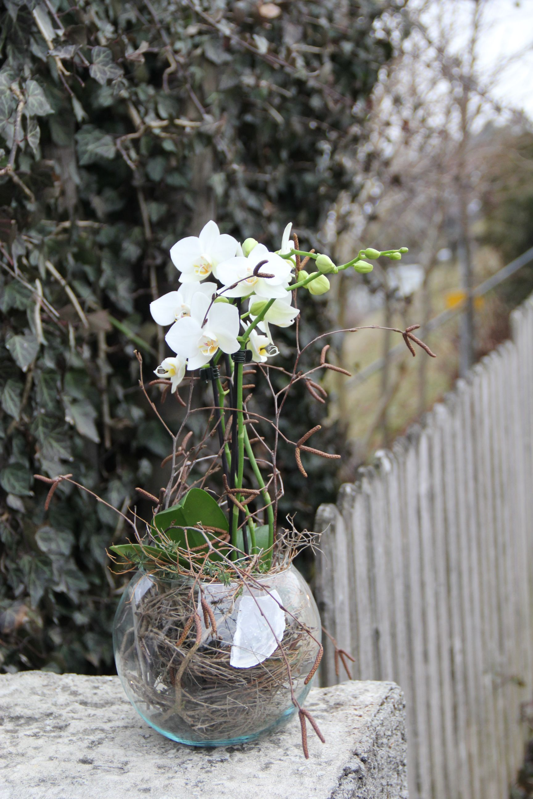 orchidee in glas einpflanzen diy nat rlich dekorieren ideen glass vase vase und glass. Black Bedroom Furniture Sets. Home Design Ideas