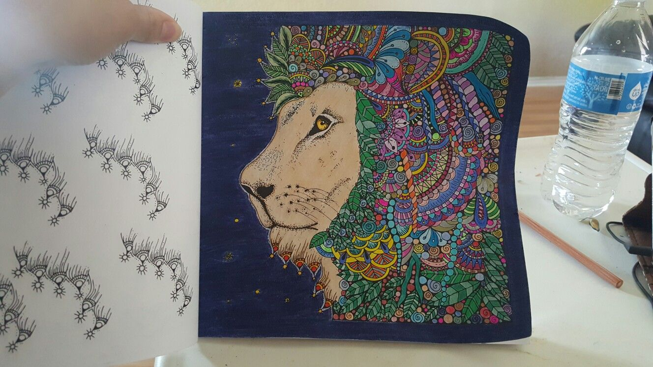 Lion magic path coloring book | magic path coloring book ...