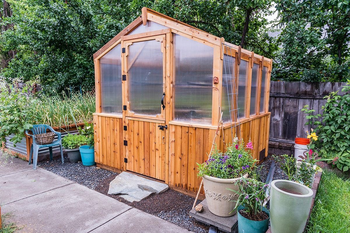 Greenhouse kits 8x8 cedar outdoor living today cedar