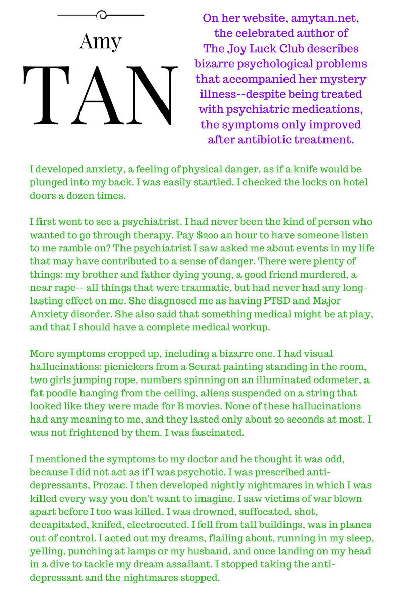 """I'm going to be brutally honest. Some people who have Lyme disease are crazy.   I should know. Before I was diagnosed and treated, my baseline of """"a ..."""