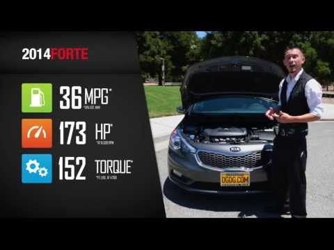 Video: 2014 Kia Forte Review By Cody Elemen Capitol Kia | DGDG.COM | San  Jose, CA Schedule A Test Drive With Cody Codyelemen@dgdg.com Or (408)  597 6396