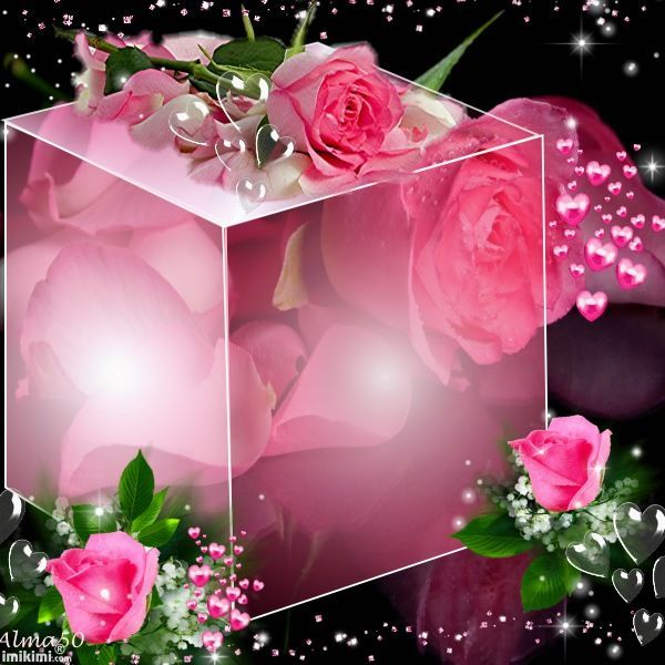 Image result for BEAUTIFUL CUBE FRAMES FOR PICTURES