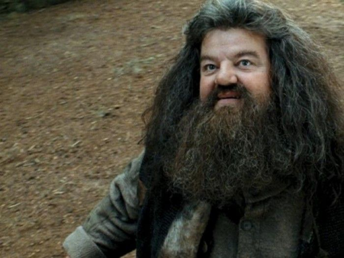 Everything I Need To Know I Learned From Rubeus Hagrid Harry Potter Film Harry Potter Fakten Harry Potter Asthetik