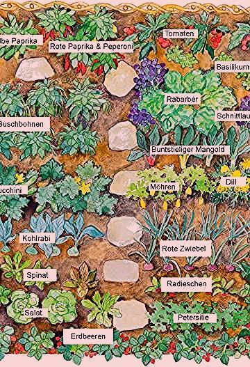 Photo of Küchengarten: Große Ernte auf kleiner Fläche