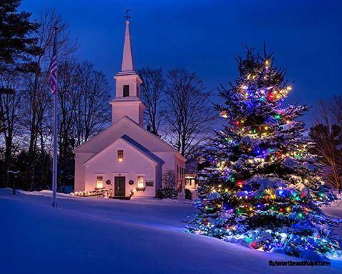 Church yard tree