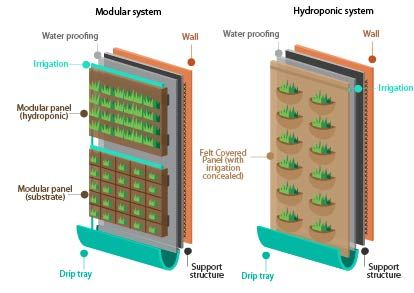 Green wall systems may vary enormously these are two for Wall drainage system