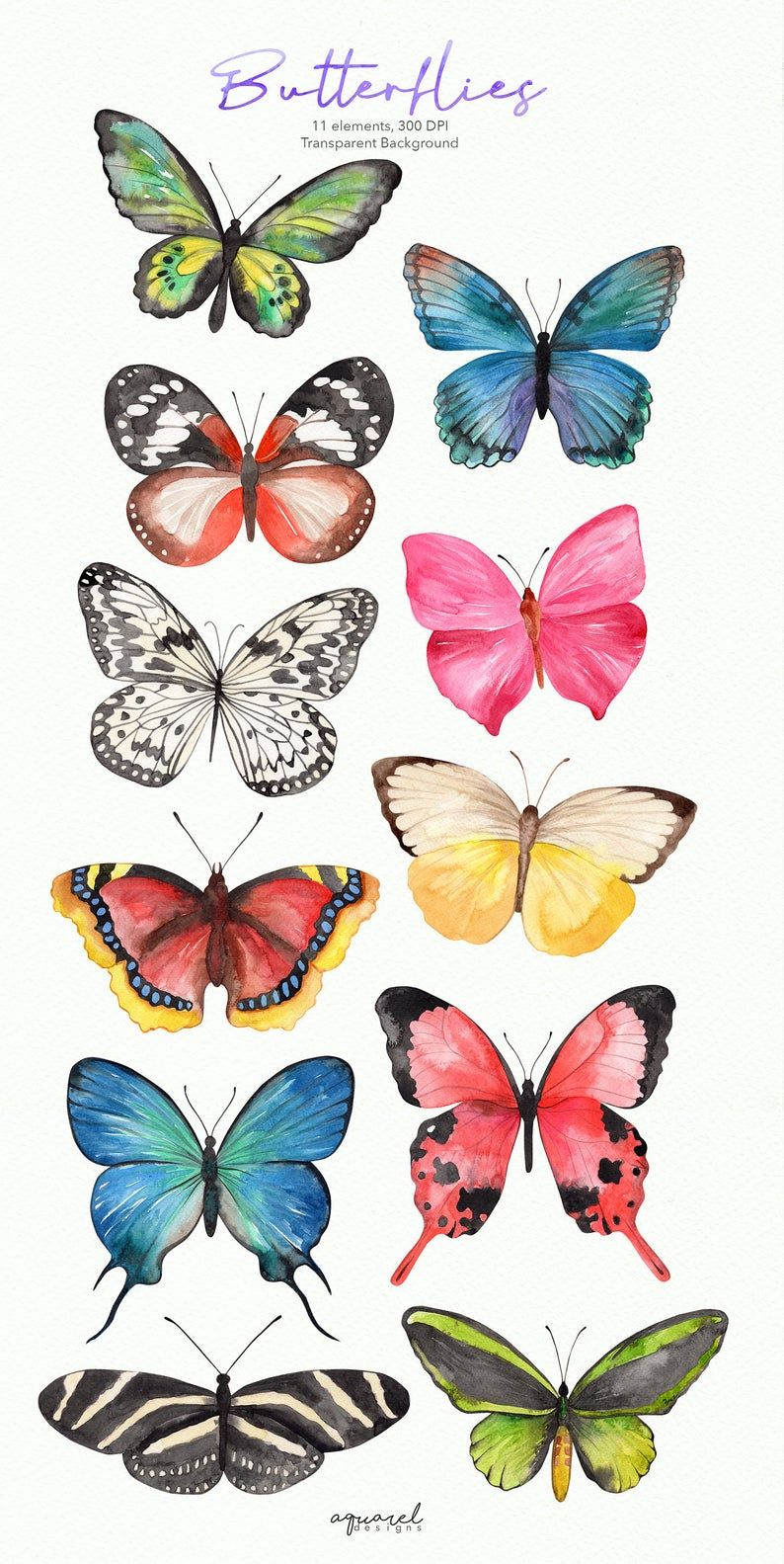 Watercolor Butterfly clipart Butterfly PNG wreath png