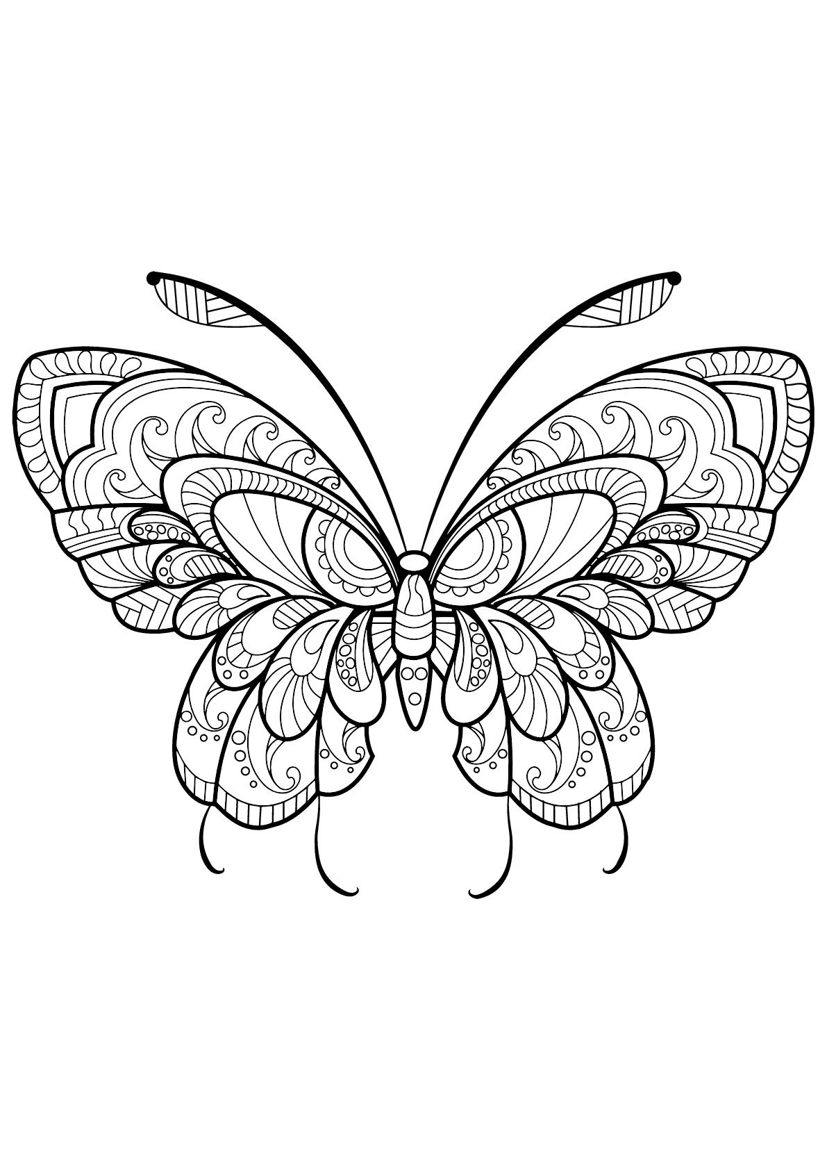 One Of The Most Simple Insect To Color For Your Children These Butterflies Are Only Butterfly Pictures To Color Butterfly Coloring Page Insect Coloring Pages [ 1684 x 1191 Pixel ]