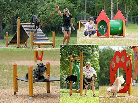 dog obstacles backyard - Google Search   Dog agility ...