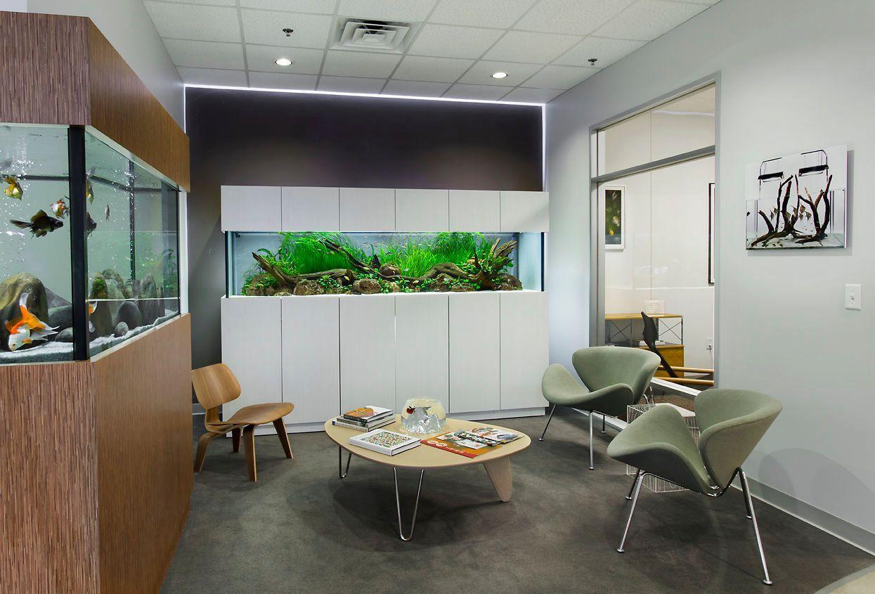 Aquarium Design Group | Small living room, Mediterranean ...