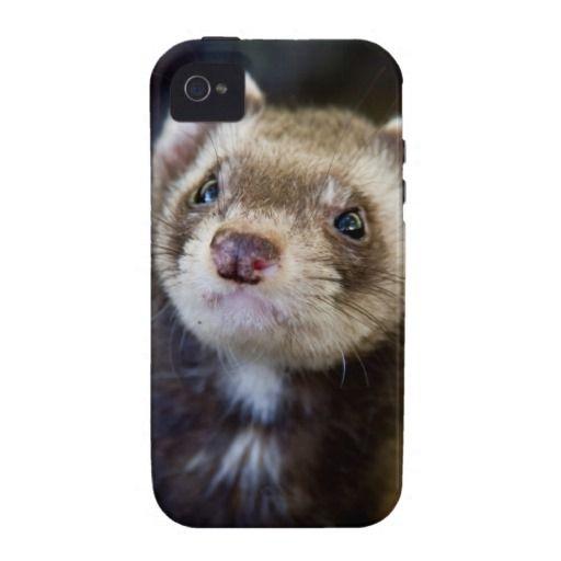 Ferret Vibe Case-Mate IPhone 4 Cases