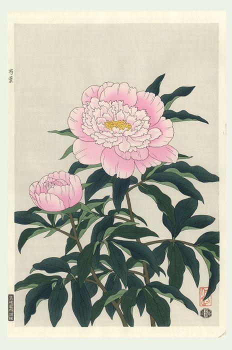 Nisaburo Ito 1910 1988 Peony Japanese Art Pinterest