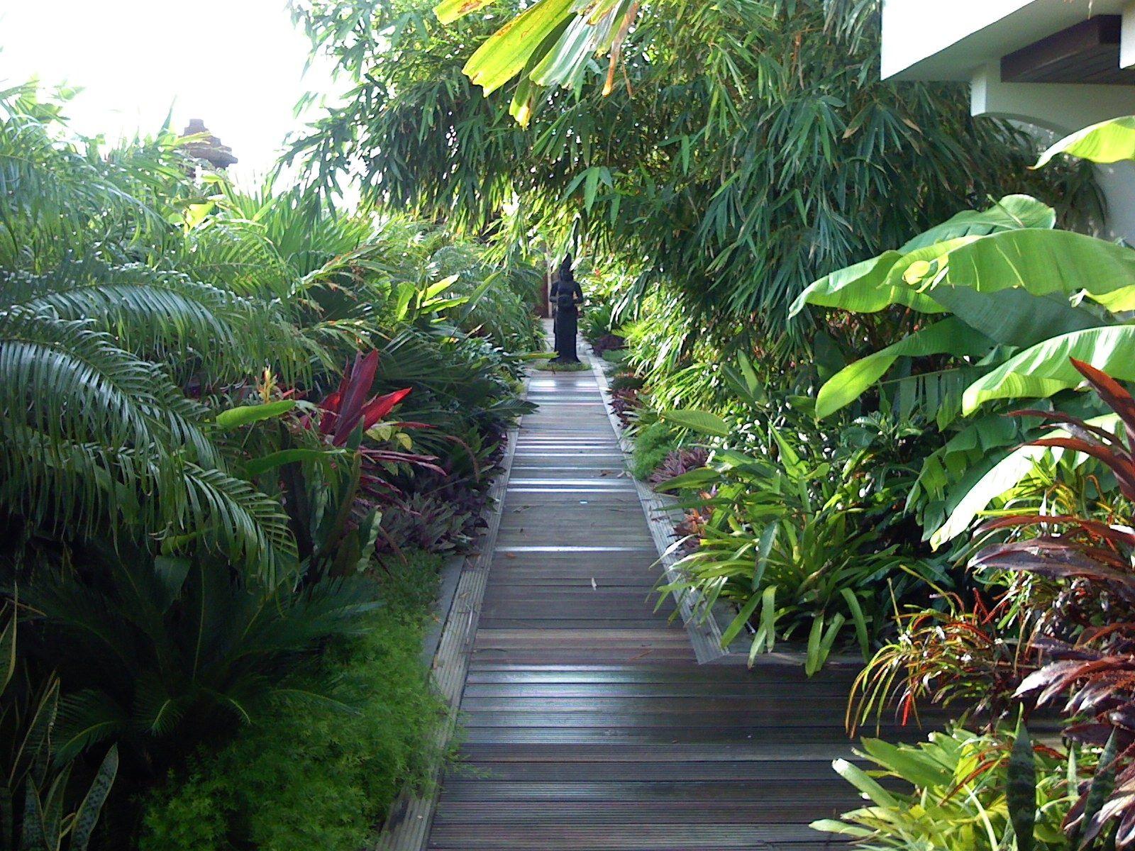 baoase resort curacao. landscaping