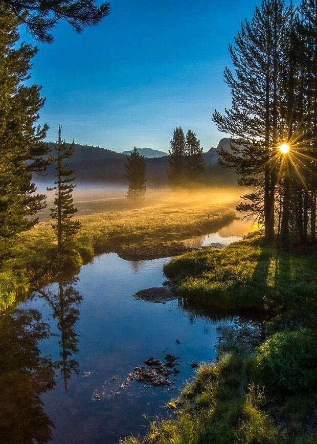 красивые фотографии утро природа написать, что