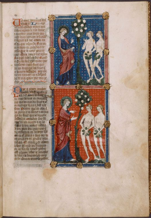 Two miniatures: God calling Adam and Eve (who now appear with fig leaves), and Adam blaming Eve for giving him the Appl... (ca. 1390)