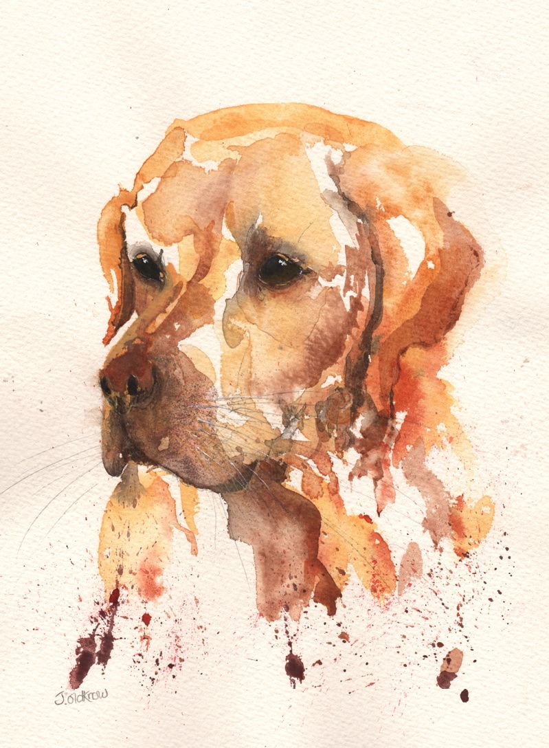 Watercolour Dog Painting Watercolor Dog Dog Paintings Animal