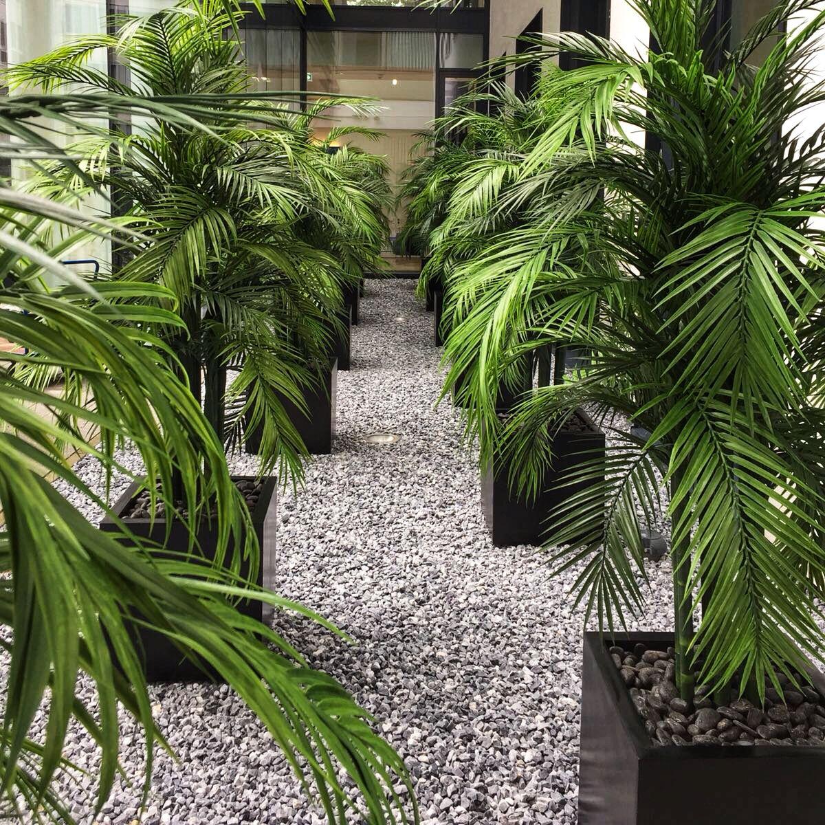Wetterfeste Kunstpflanzen Gartenideen Sichtschutz Arecapalme