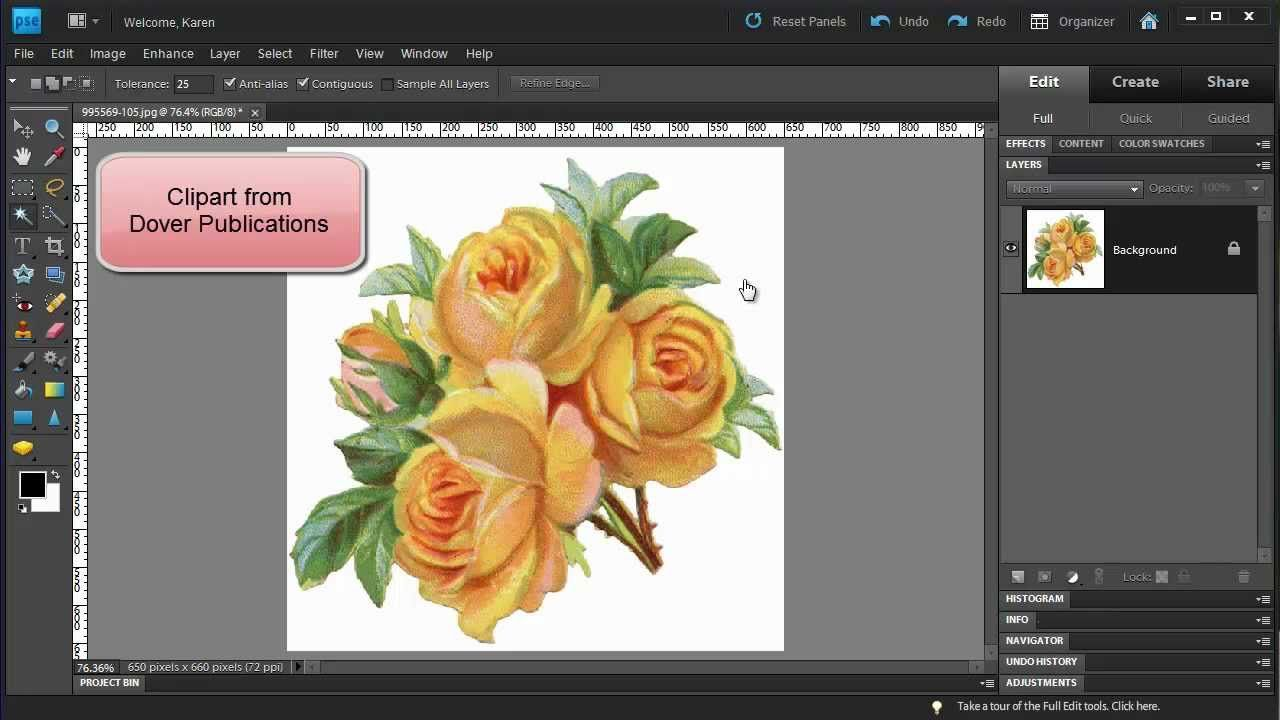 Photoshop elements make a floral pattern from clipart photoshop photoshop elements make a floral pattern from clipart baditri Gallery