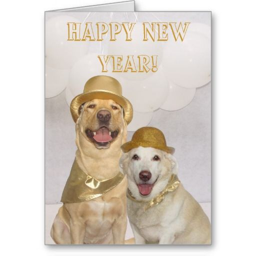 Customizable Happy New Year Lab Dogs Holiday Card Zazzle Com Happy New Year Dog Dog Holiday Cards Lab Dogs