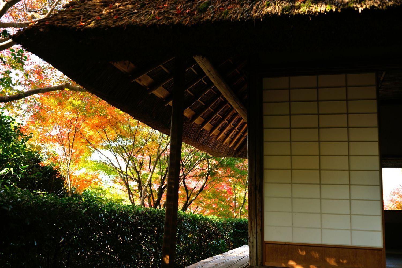 Je me demande si Matsuo Basho, le maître du Haiku, et le moine Tesshu aimaient discuter ici ?