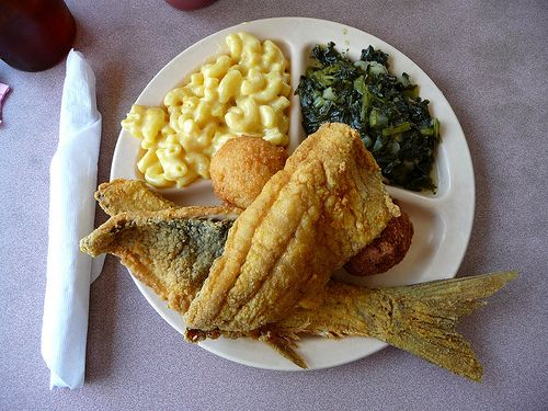 Mullet fish our bacon fried mullet books worth reading for Mullet fish recipe