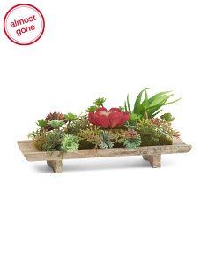 Faux Succulent Garden On Wood Plate