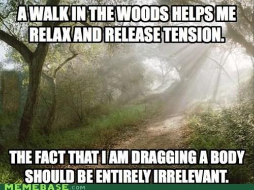 Funny Hiking Meme : Walking in the woods meme slapcaption.com hiking pinterest meme