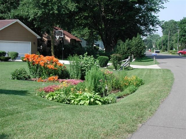 Example rain garden in low lying area of yard where storm ... on Landscaping Ideas For Wet Backyard id=45346