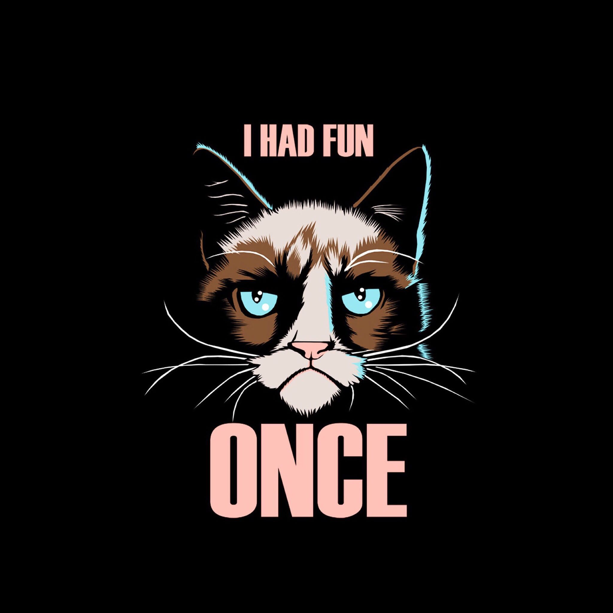 Cat Wallpapers For Iphone: Pin By Jerry On GRUMPY CAT