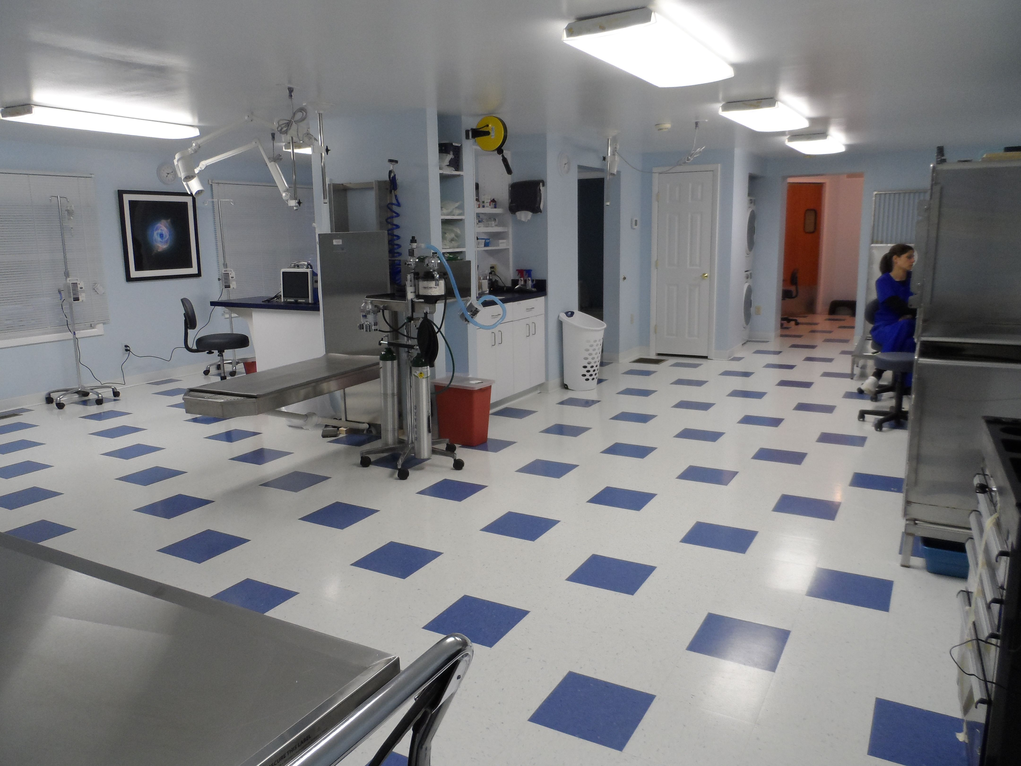 Emergency Pet Care Veterinary Emergency Center of