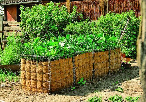hochbeet gabionen garden garten hochbeet bauen und hochbeet. Black Bedroom Furniture Sets. Home Design Ideas