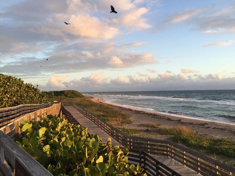 12 Stunning Florida Beaches To Visit Right Now If You Re Already Missing Summer Florida Beaches Fall Beach Beach